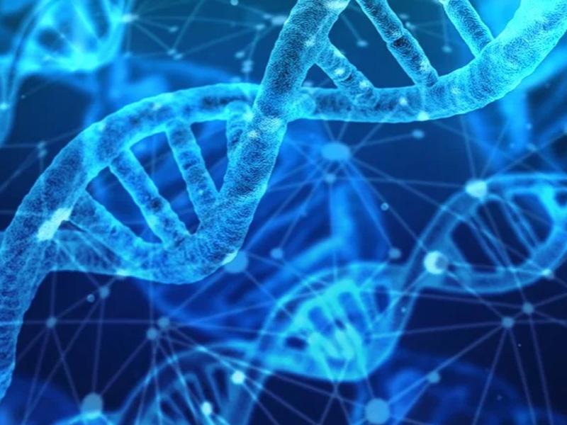 Descubren un virus que podría acabar con el cáncer