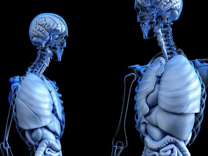 Gran avance contra el cáncer de pulmón