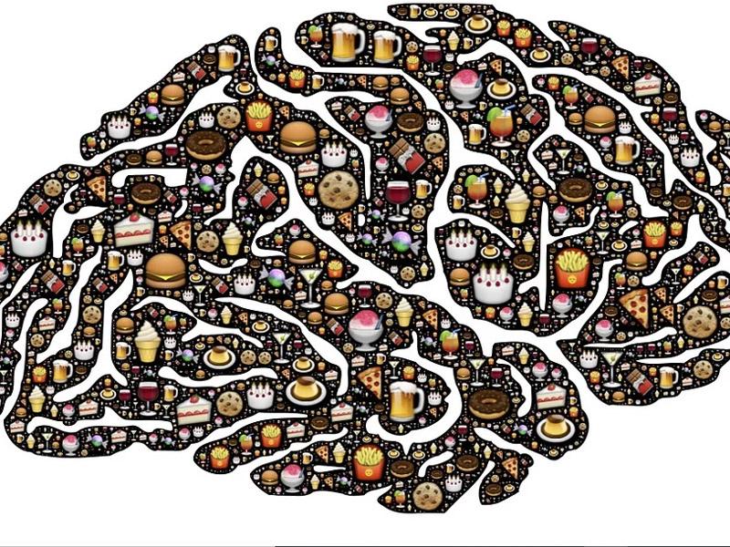Las neuronas vigilan lo que comes