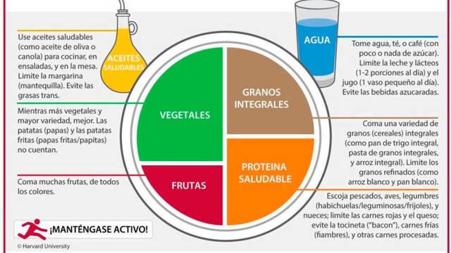 Cuatro grupos alimenticios