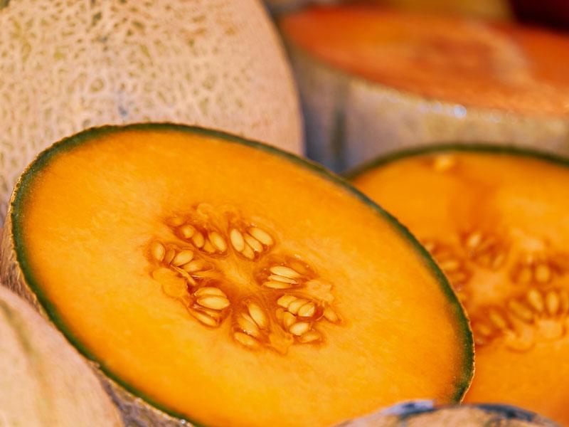 Alerta sanitaria por casos de salmonella en melones